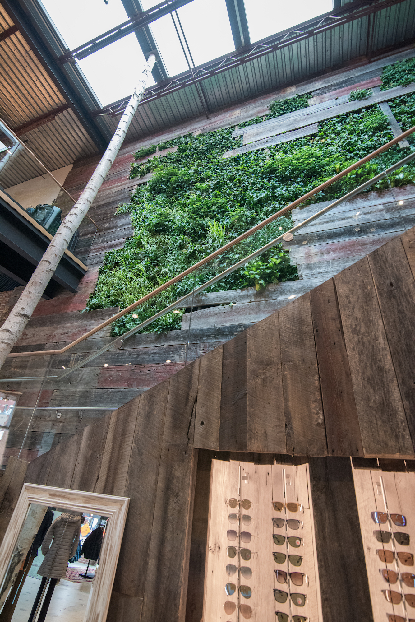 Outerwear retail store Denali in Providence, Rhode Island, featuring plants on a live wall sourced by Rousseau Reclaimed Lumber & Flooring
